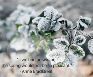 Winter Quotation by Anne Bradstreet
