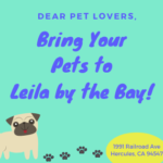 Bring your pets at Leila by the Bay