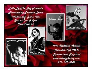 Flamenco Show